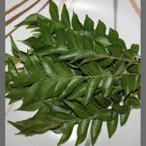 Curry Leaves 15g